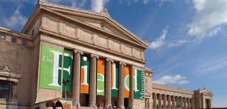 Free Chicago Museums: Free Days in 2016 at Field Museum in Chicago