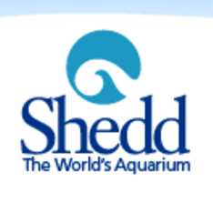16 Free Days at Shedd Aquarium in Chicago in October and November 2015