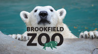 Brookfield Zoo:  FREE on Tues and Thurs from Oct 1 to Dec 31, 2015