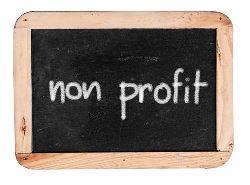 Non-Profit-Organizations
