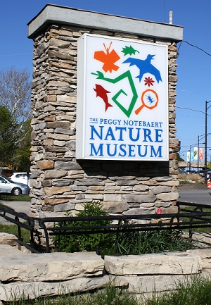 free admission to peggy-notebaert-nature-museum