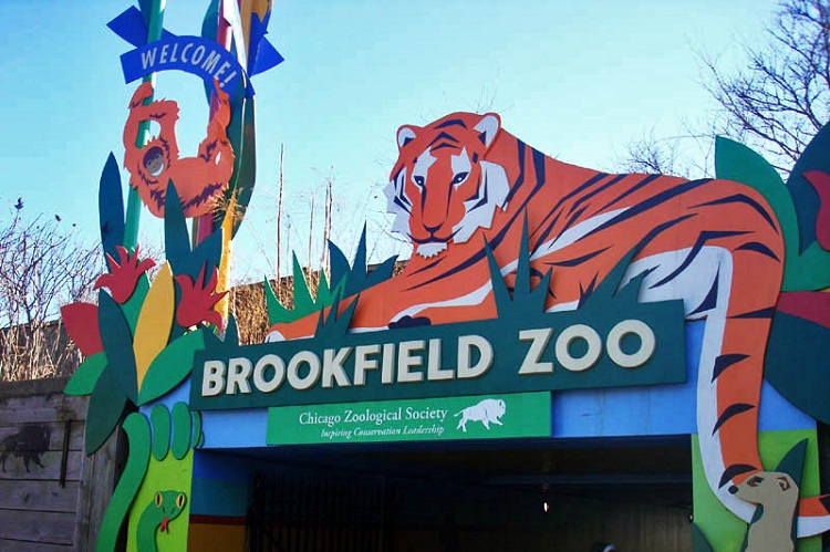free days at brookfield zoofree days at brookfield zoo