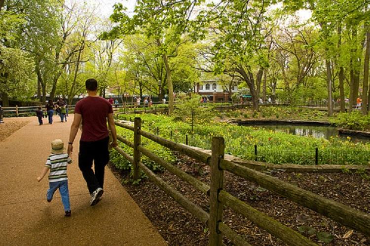 walking through Lincoln Park Zoo