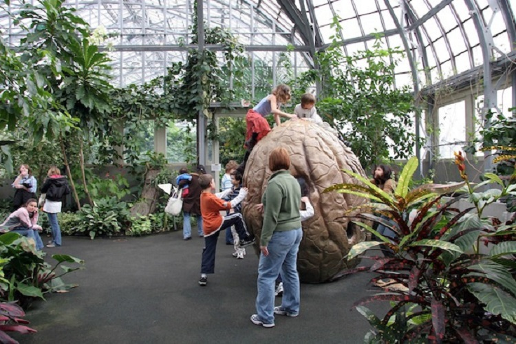Garfield conservatory fire & ice kids play