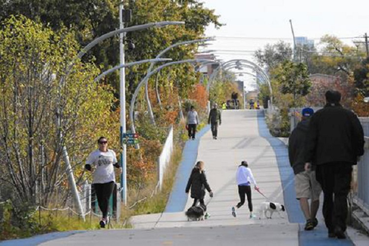 free walks on the 606 trail
