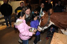 feed the animals at zoo on thanksgiving