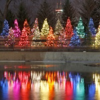 free zoolights in chicago