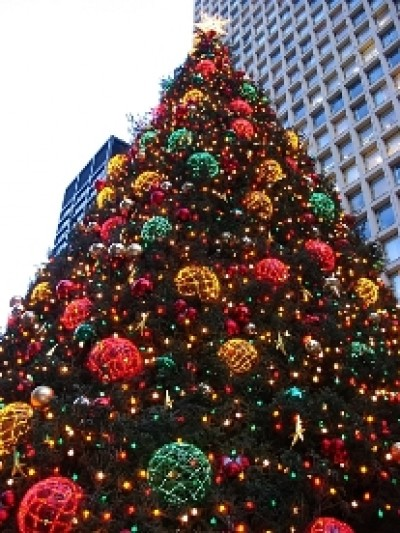 Christmas_Tree_chicago