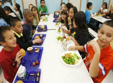 FREE Chicago school lunch