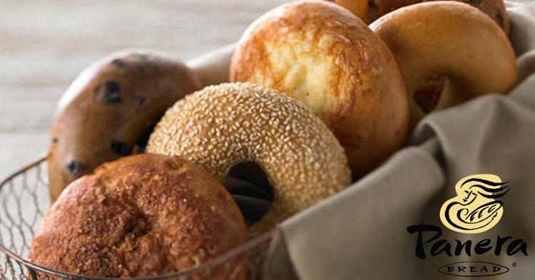free bagels at Panera