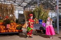 halloween event at lowes